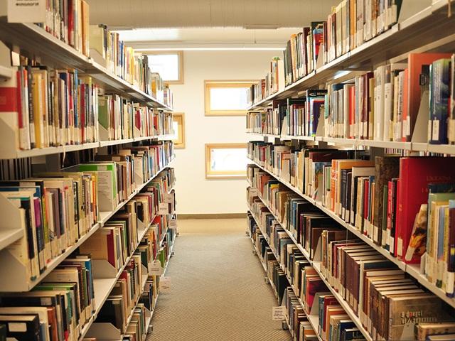 Дві найбільші дитячі бібліотеки Кіровоградщини отримали керівників